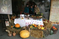 PUMPKINFAIR IN IVANIĆ, IVANIĆ-GRAD, OCTOBER 2017.